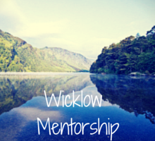 Wicklow Mentorship