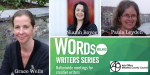 Writers Series Kilkenny